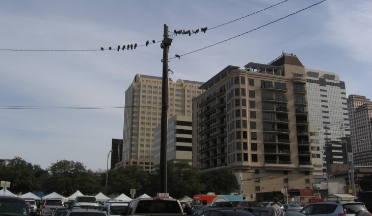 Bird's Eye Market View