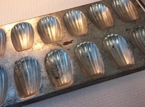 madeleine tin