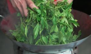 Minto Island Tea leaves