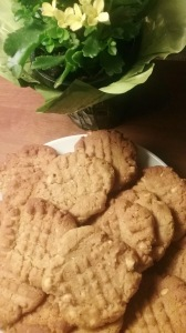 Peanut Butter Cookies, Fast